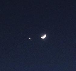 月と金星の接近拡大.jpg
