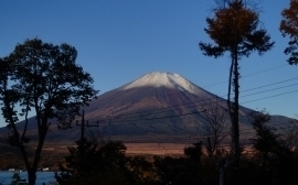 朝の富士山.jpg