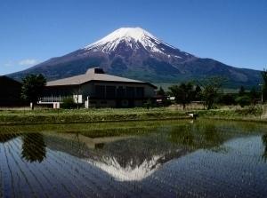 田んぼの逆さ富士.jpg