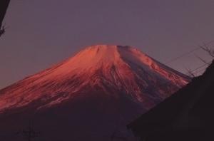 紅富士.jpg
